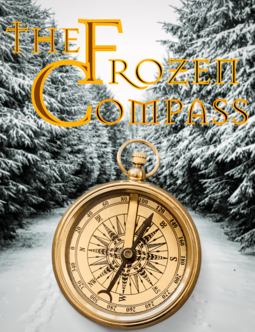 The Frozen Compass Christmas activity