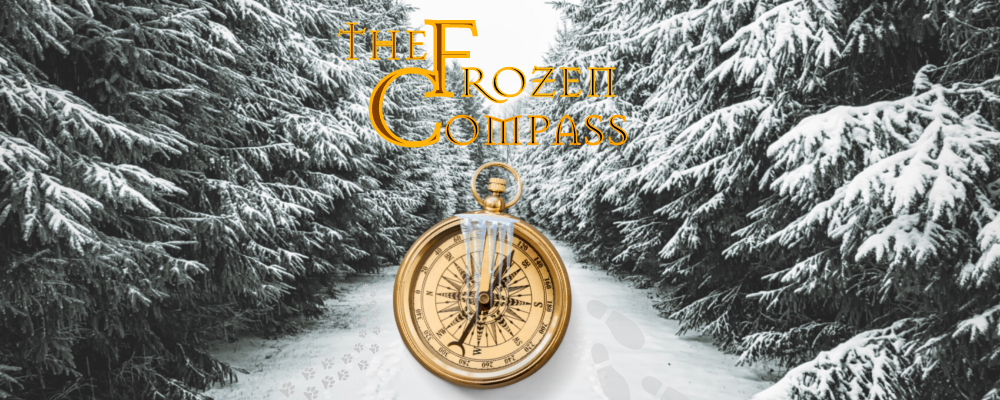 The Frozen compass Christmas virtual game